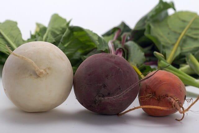 野菜のカブ